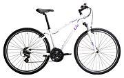 Rower crossowy damski Giant LIV Rove 4 2020
