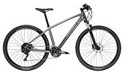Rower crossowy Trek Dual Sport 4 2020
