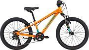 Rower dziecięcy Cannondale Trail 20 Girls 2020