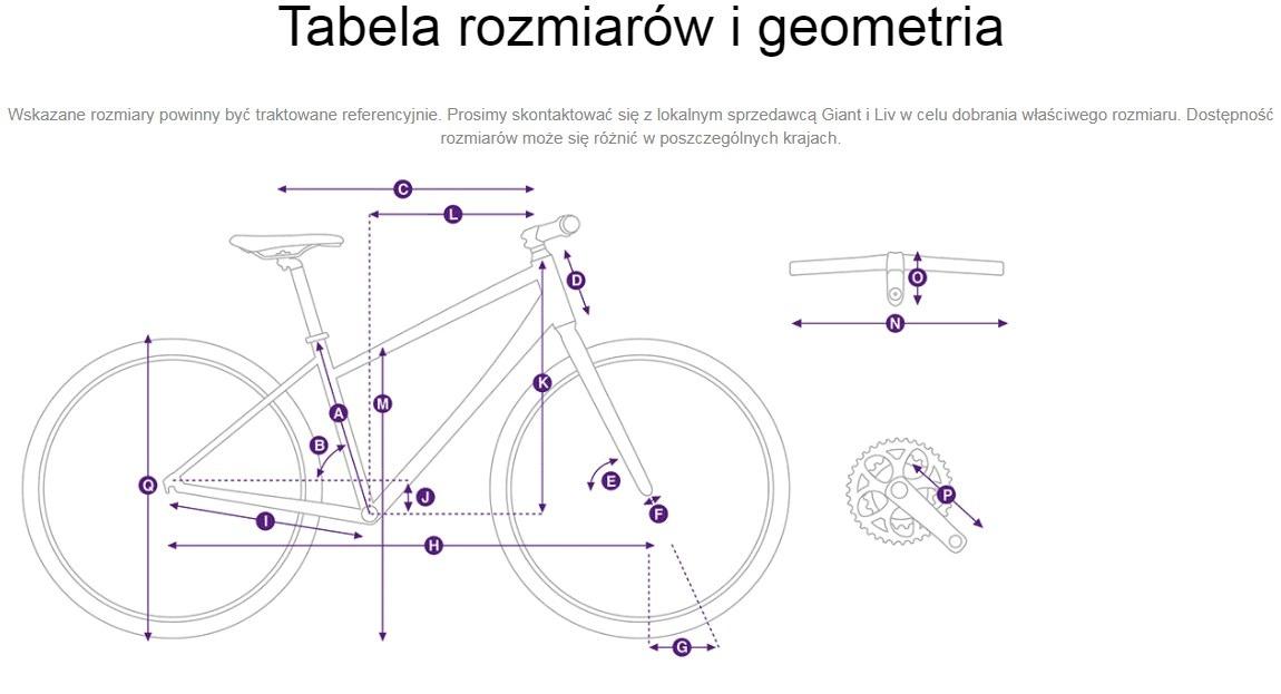Tabela rozmiarów i geometria