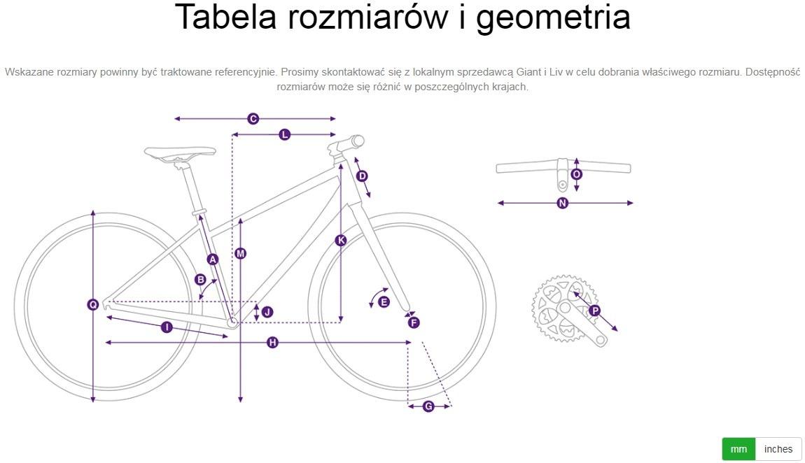 Tabela rozmiarow i geometria